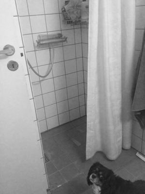 Our Danish shower. And yes, it looks 100% better in b&w.